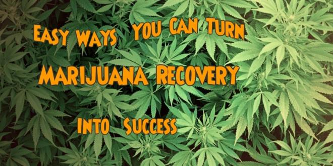 marijuana recovery
