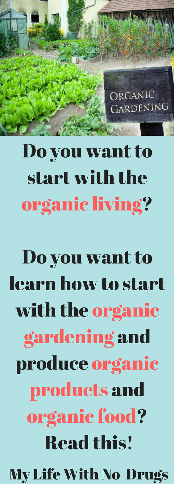 Do you want to start with the #organicliving  Do you want to learn how to start with the #organicgardening and produce #organicproducts and #organicfood? #organic  Read this!  #organicfood #organicliving #love  #healthyfood #chemicalfree  #garden #report