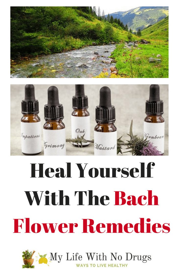 Heal Yourself With The Bach Flower Remedies