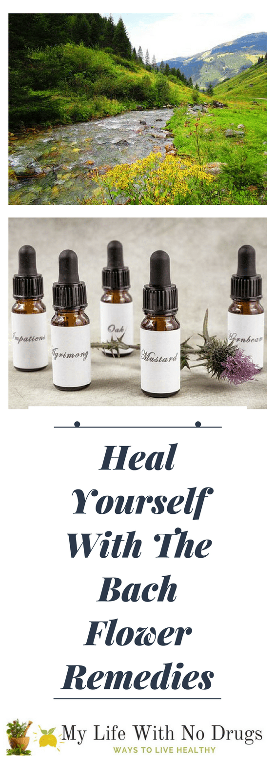 #Heal Yourself With The Bach Flower #remedies #naturalremedies #homeremedies #healthy #flower #bach