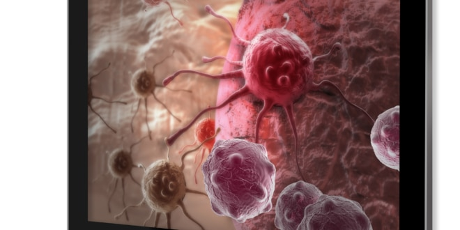 T-cells are a type of white blood cell which functions with macrophages