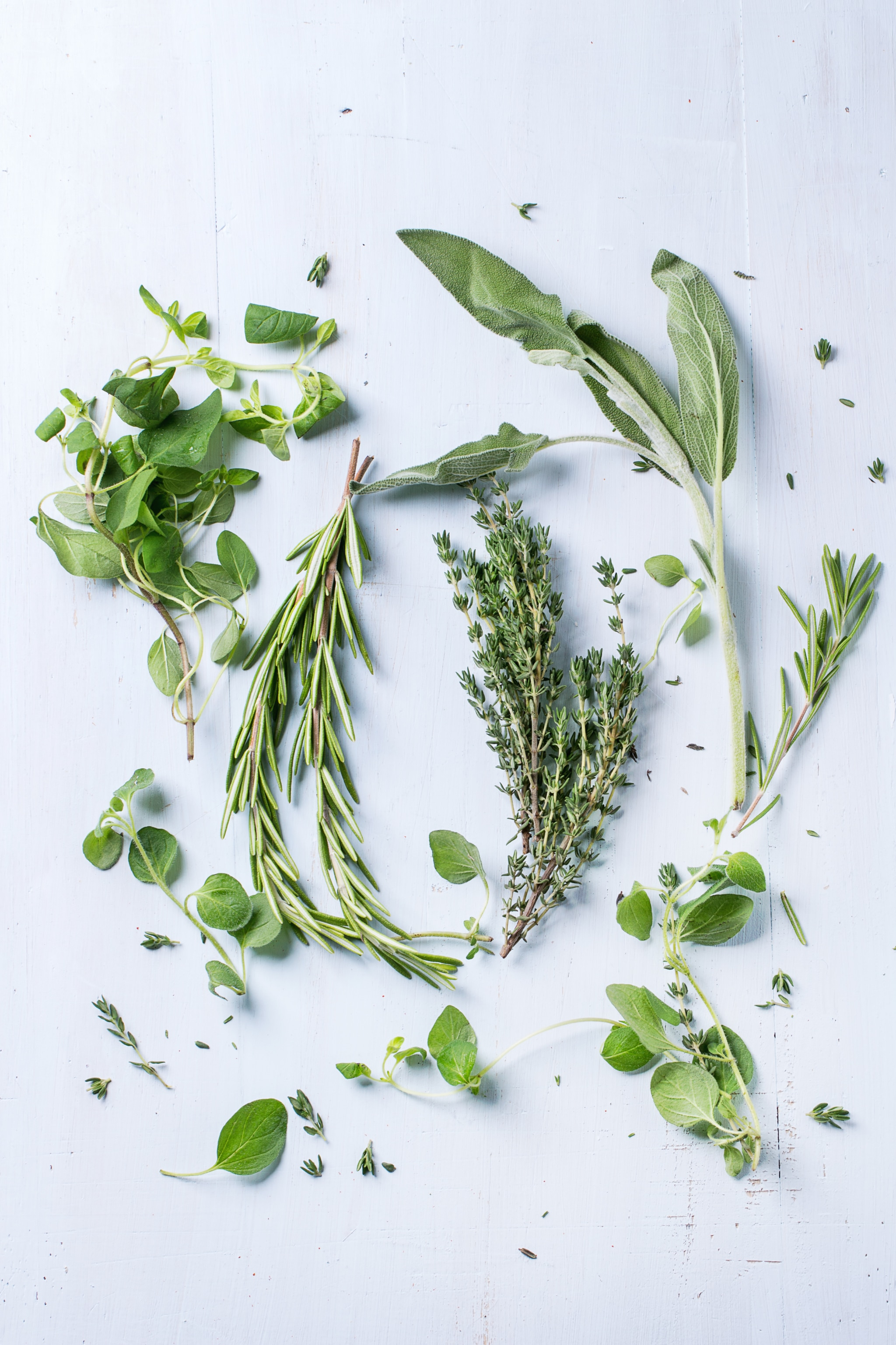 Assortment of fresh herbs