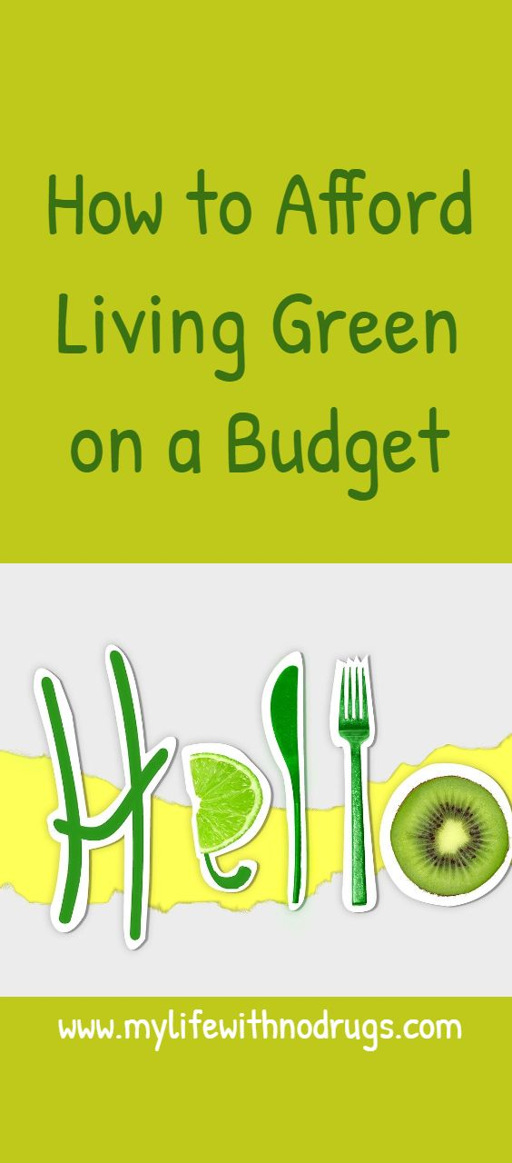 How to Afford Living Green on a Budget