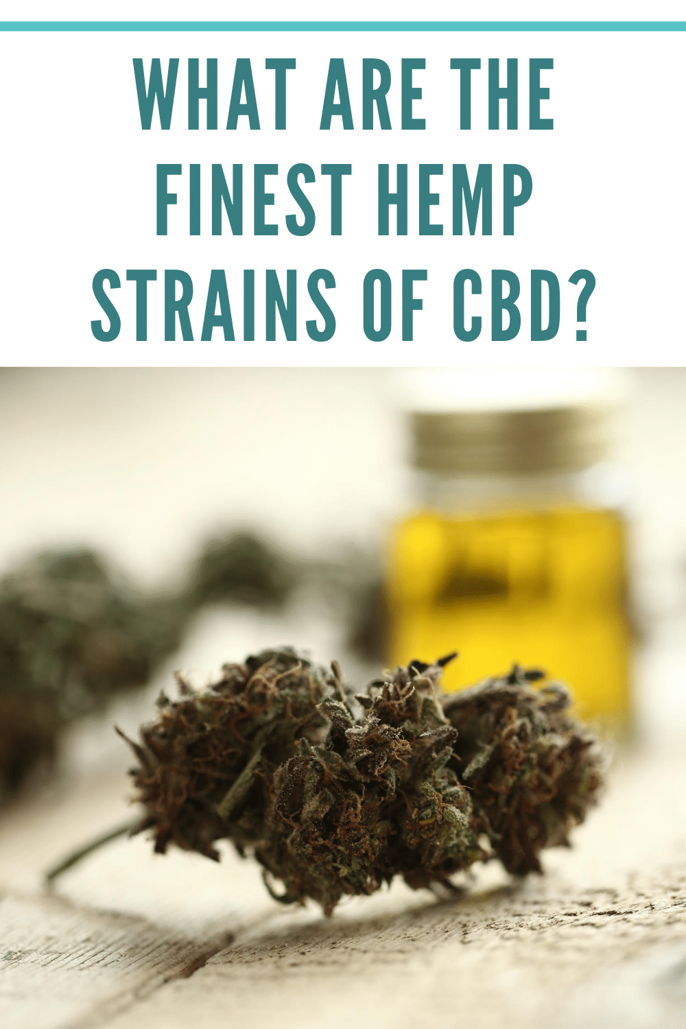 What Are The Finest Hemp Strains Of CBD?