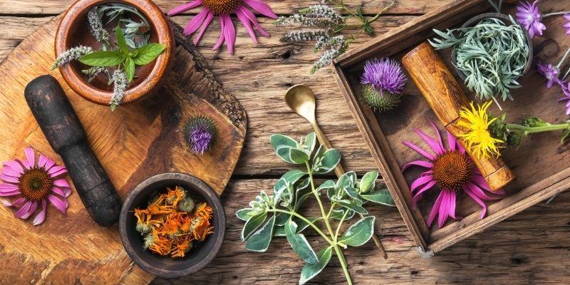 Holistic Health Tips - Vitamins and Herbs